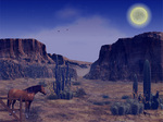 Wild west animal animated wallpaper 26345